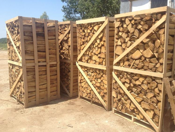 Brennholz Spanien 2017